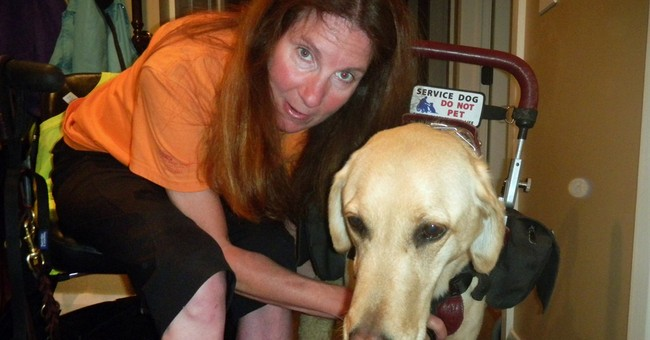 Rough-and-tumble dogs top people on knee surgery