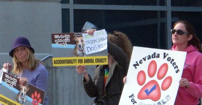 Hearing set in Nevada dog torture, killing case