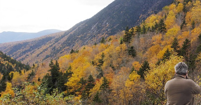 New England raking in millions from leaf peepers