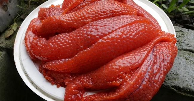AP PHOTOS: Washington hatchery gives away salmon