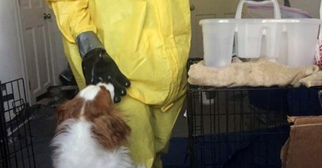 Dallas nurse's dog tests negative for Ebola