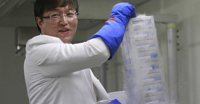 Cloning whistleblower: Little changed in S. Korea