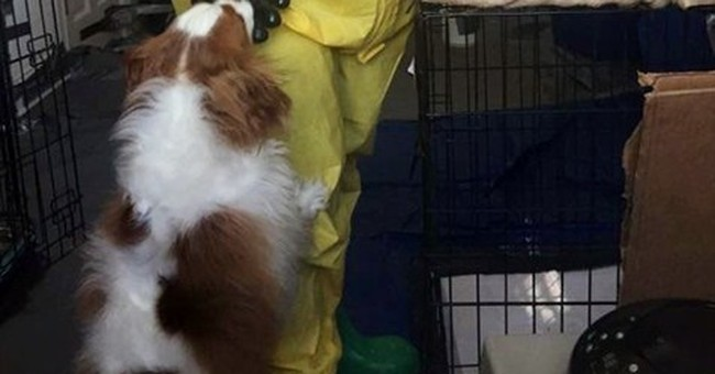 Dallas nurse who survived Ebola must wait for dog