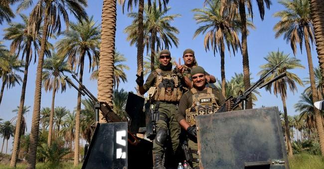 Iraqi troops retake control of Sunni town