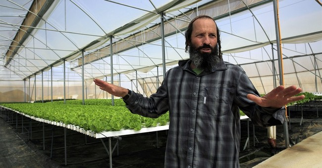 Israeli farmers observe sabbatical _ with a wink