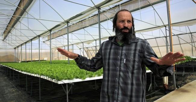 Israeli farmers observe sabbatical _ with a wink