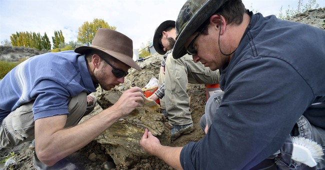 Possible complete mammoth skeleton found in Idaho