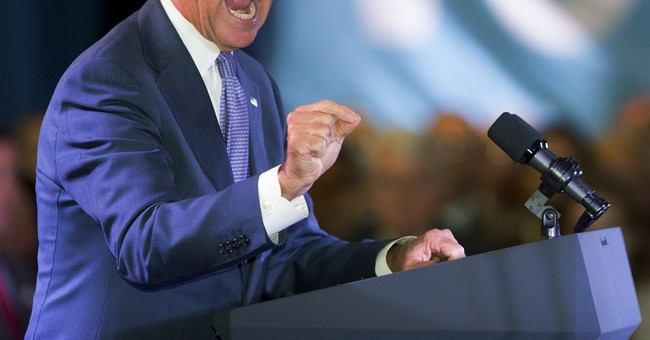 Biden: Voters can 'stop the march' of tea party