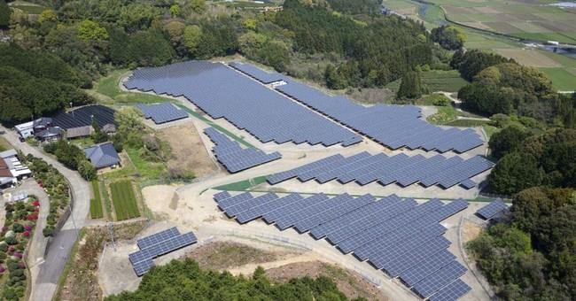 After Fukushima, Japan gets green boom _ and glut