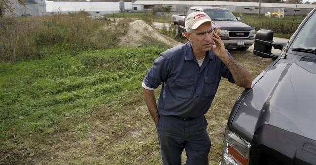 Duck farming fading away on New York's Long Island