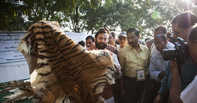 India destroys stockpile of illegal wildlife parts