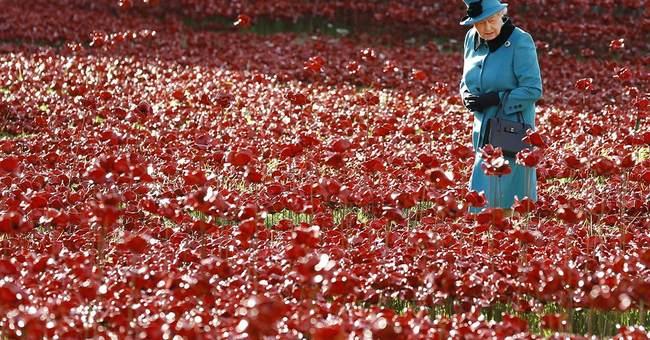 Tower of London poppy display draws huge crowds