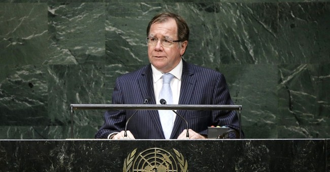 New Zealand hopes UN win bears diplomatic fruit