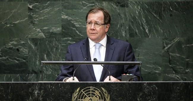New Zealand hopes UN win bears diplomatic fruit