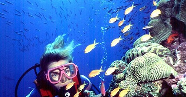 Plan to dump sediment on Great Barrier Reef OK'd