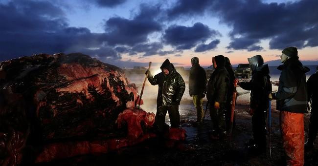 AP PHOTOS: Whale catch is survival in Alaska town