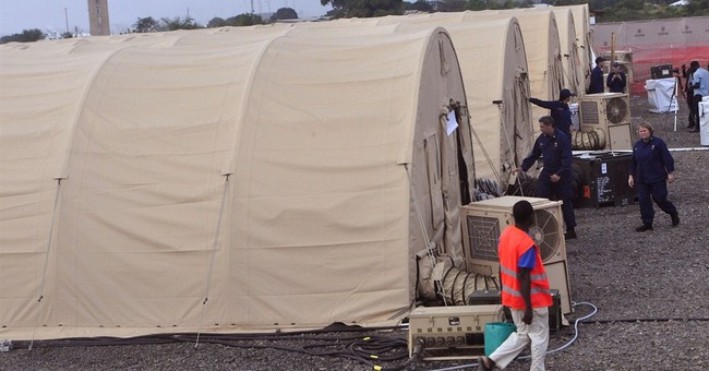 Response to Ebola needs flexibility, experts say
