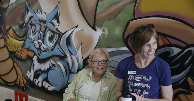 California cat cafe is catnip for feline fans
