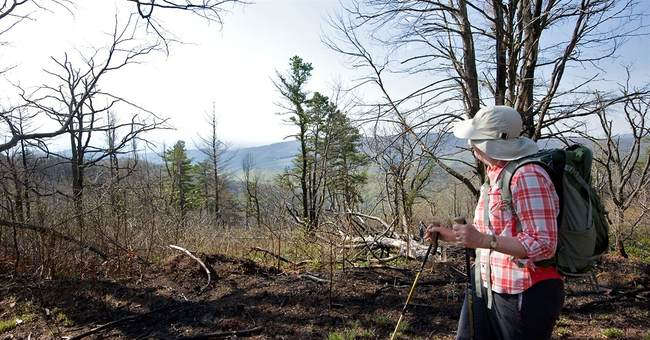 Fracking to be permitted in GW National Forest