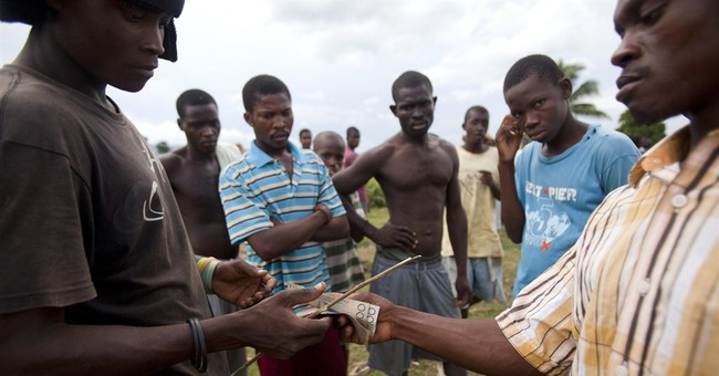AP PHOTOS: Bulls fight for bets in rural Haiti
