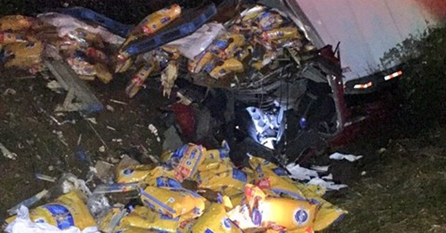 Trooper: Driver is lucky dog food didn't crush him