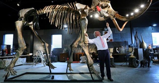 Mammoth skeleton sold for $300,000 at UK auction