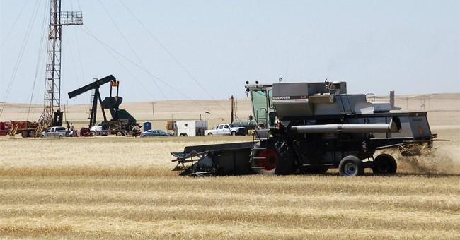 Poor durum crop likely to impact pasta consumers