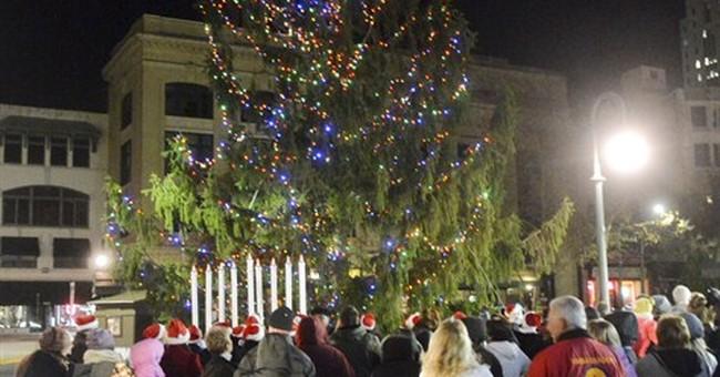 City plans celebration for 'Charlie Brown' tree