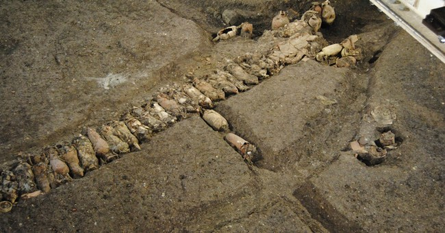 Work on Rome subway digs up  ancient farm, tools