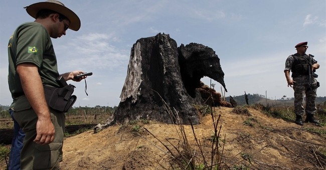 Deforestation may be at root of Brazil drought