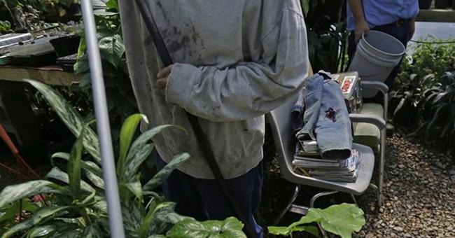 Lifers, short-timers get horticulture licenses