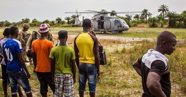 UN Ebola chief's focus is on Sierra Leone, Guinea