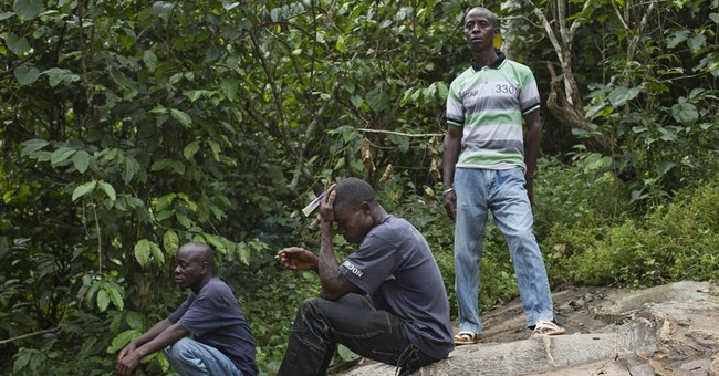 Debt and hunger at birthplace of Ebola in Guinea