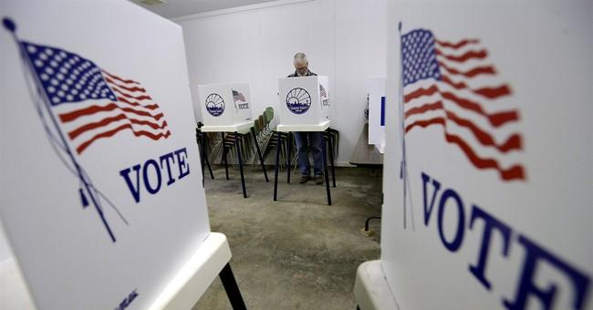 Survey shows Internet's broadening political role