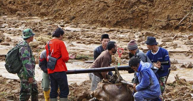 Indonesia landslide kills 8 people; 100 missing