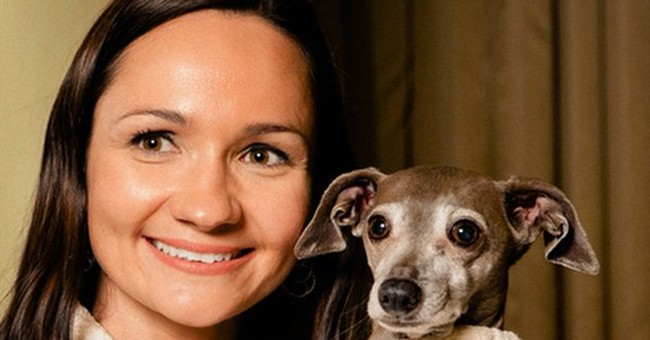 Pampered pets that don duds move to the mainstream