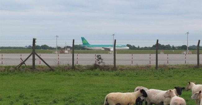 Aer Lingus rejects bid by British Airways parent