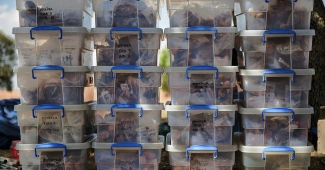 AP PHOTOS:  Spain searches for Franco-era graves
