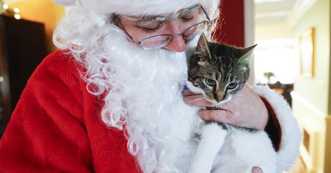 Paws by Claus: Santa delivers for animal shelter