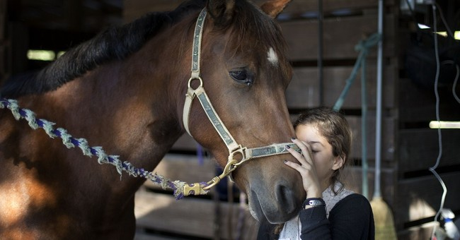 Settlement reached in horse deaths caused by tainted feed