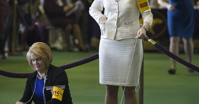 At Westminster, dog show style gets spotlight, too