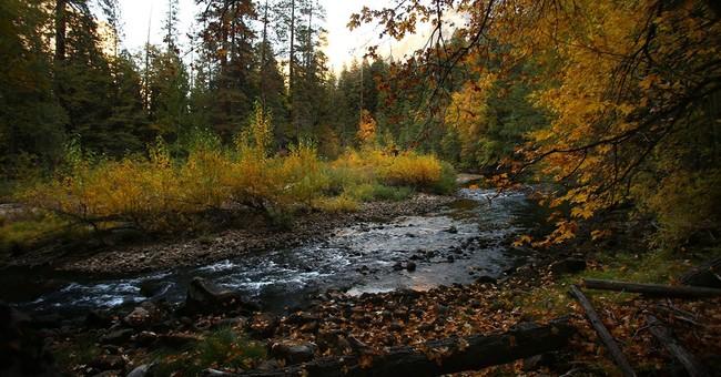 Yosemite plan includes recreational activities