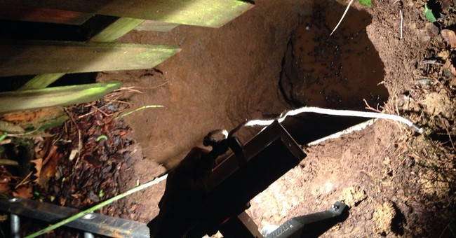 Portland, Ore., woman, dog rescued from sinkhole