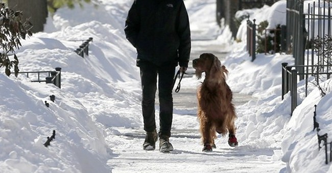 Harsh winter puts small businesses out in the cold