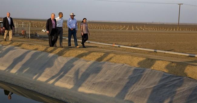 NASA turns research to California drought