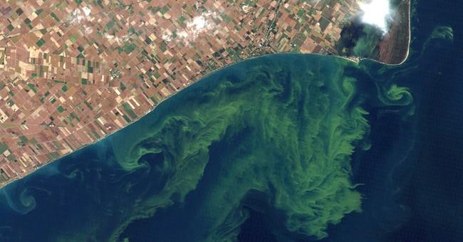 Plan seeks phosphorus cuts to stop Lake Erie algae