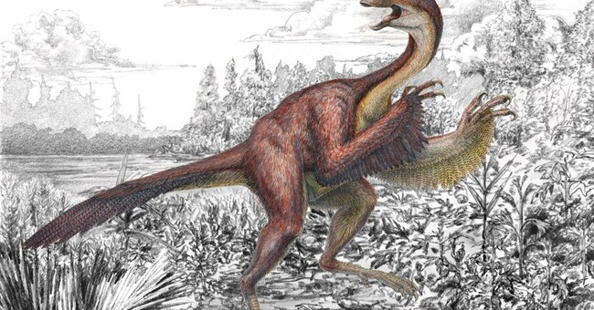 'Chicken from hell' dinosaur gets a proper name