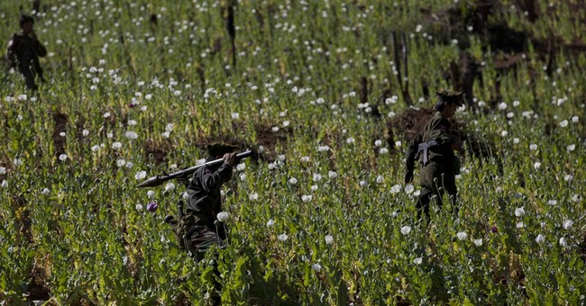 Myanmar rebels, villagers destroy poppy crops