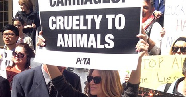 PETA's Terror Campaign Blows Up In Its Face