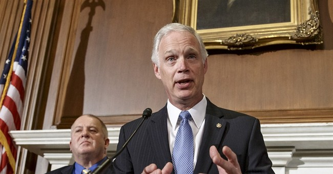 Sen. Johnson: Yes, I'm 'Highly Concerned' That Key Areas of Infrastructure Are Vulnerable To Terrorist Attack